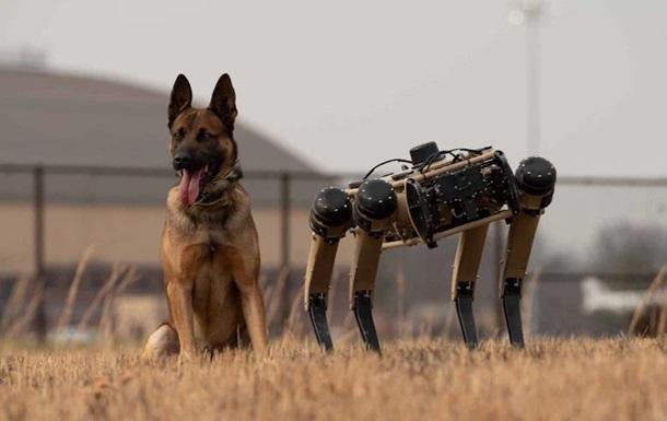 В США военные испытывают робособак Ghost Robotics